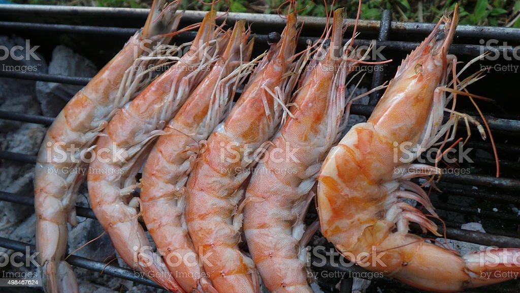 grilled prawn. stock photo