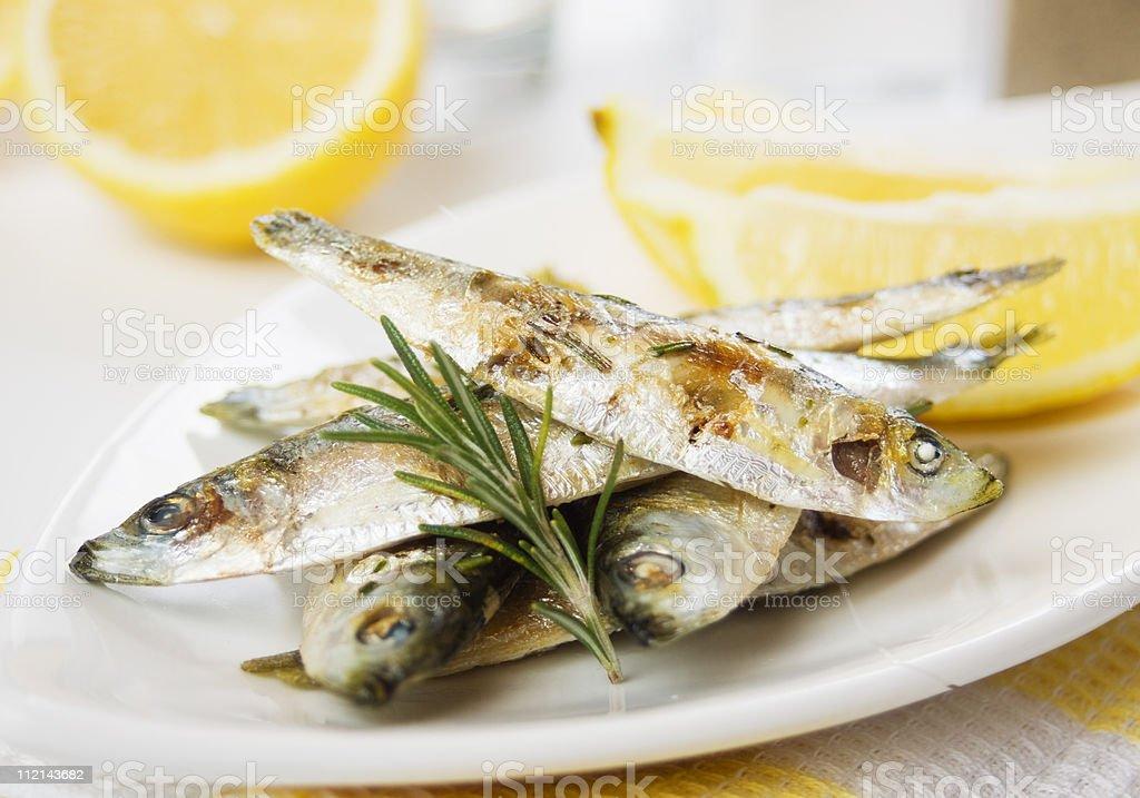 Grilled sardine fish royalty-free stock photo