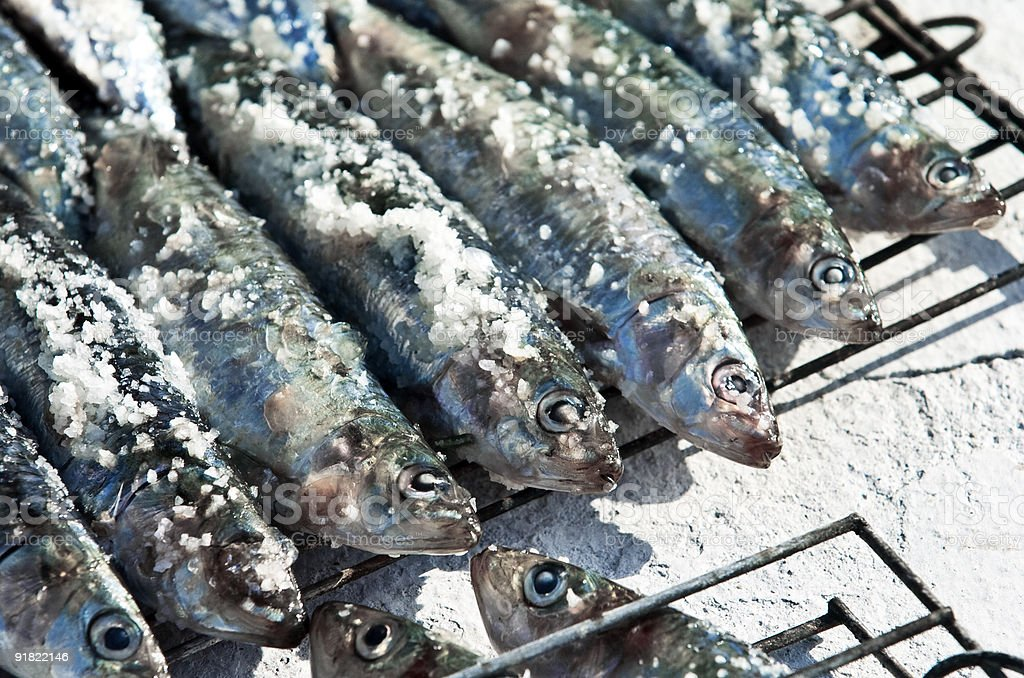 grilled sardines royalty-free stock photo