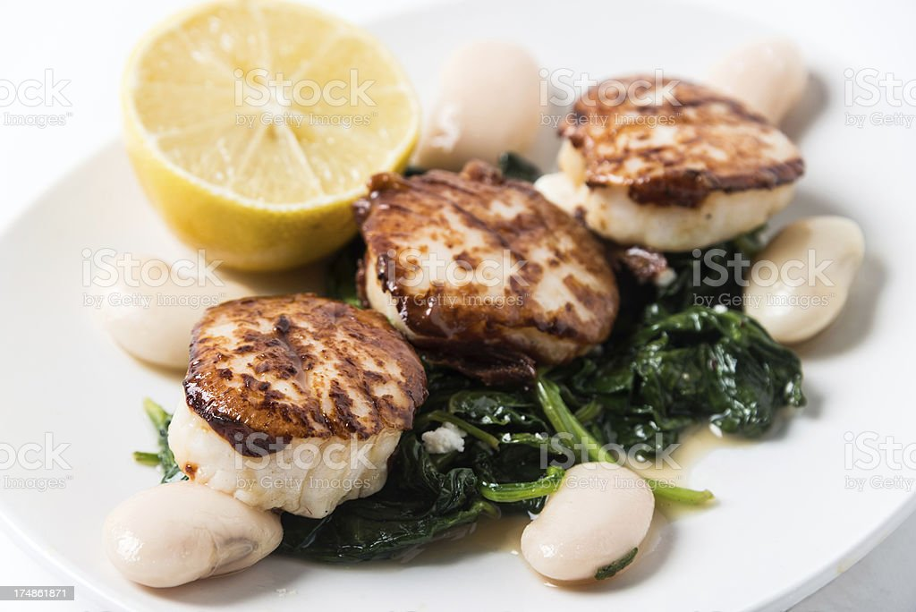 Grilled scallops royalty-free stock photo