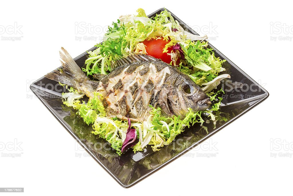 Grilled Tilapia with salad royalty-free stock photo