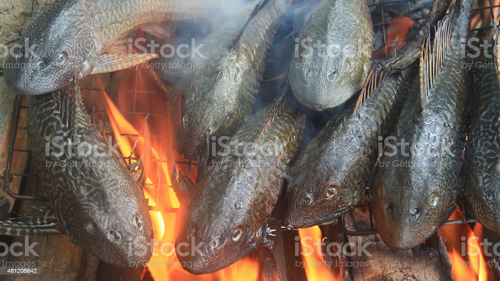 Grilling fish on barbecue stock photo