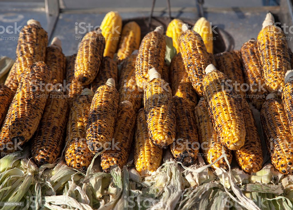 grillled corn stock photo
