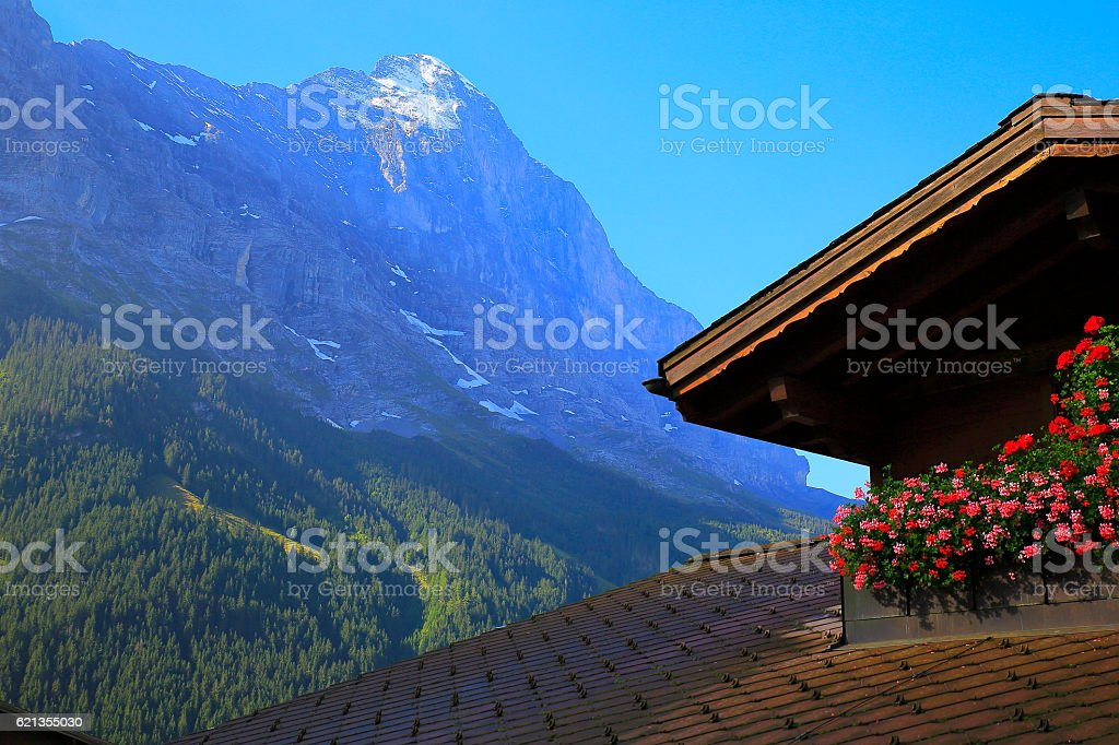 Grindelwald balcony flowerbed, overlooking the Eiger, Swiss Alps landscape stock photo
