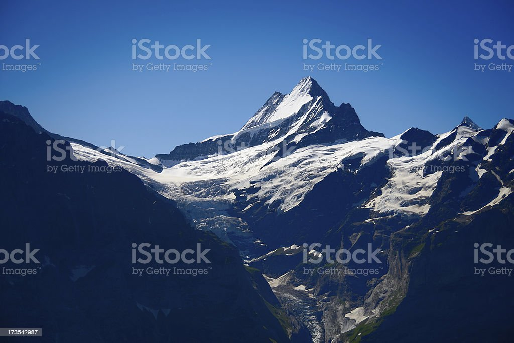 Grindelwald Glacier stock photo