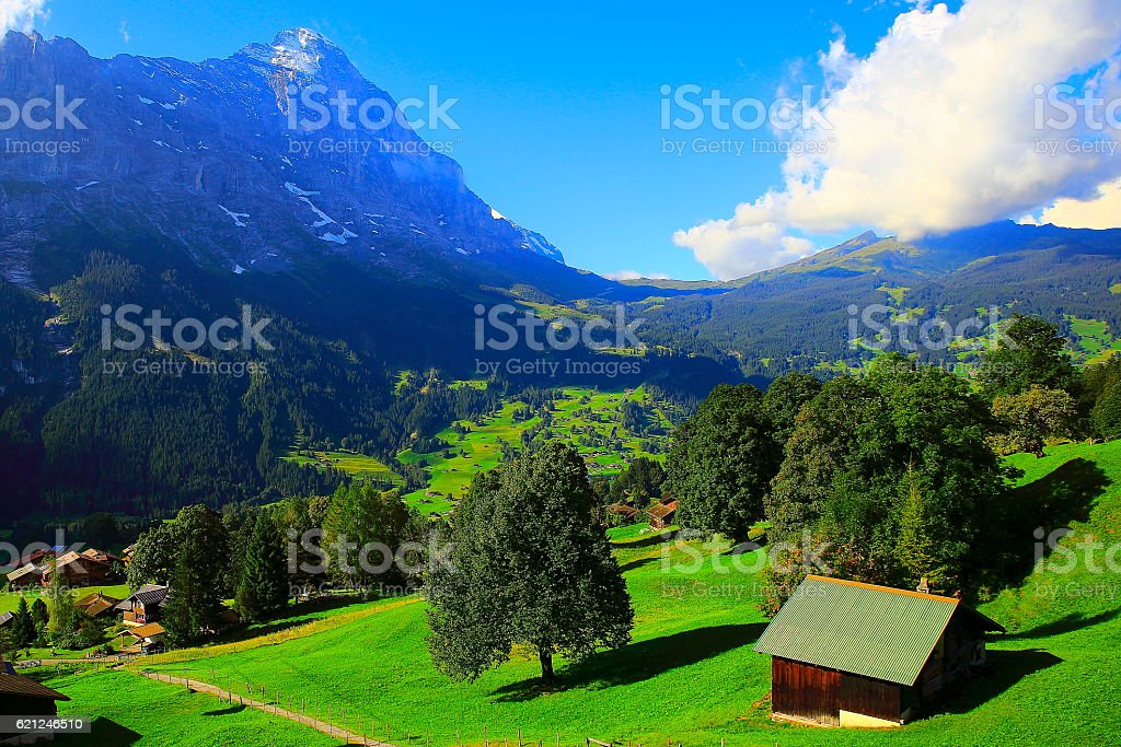 Grindelwald idyllic alpine valley panorama, Eiger, meadows Landscape, Swiss Alps stock photo