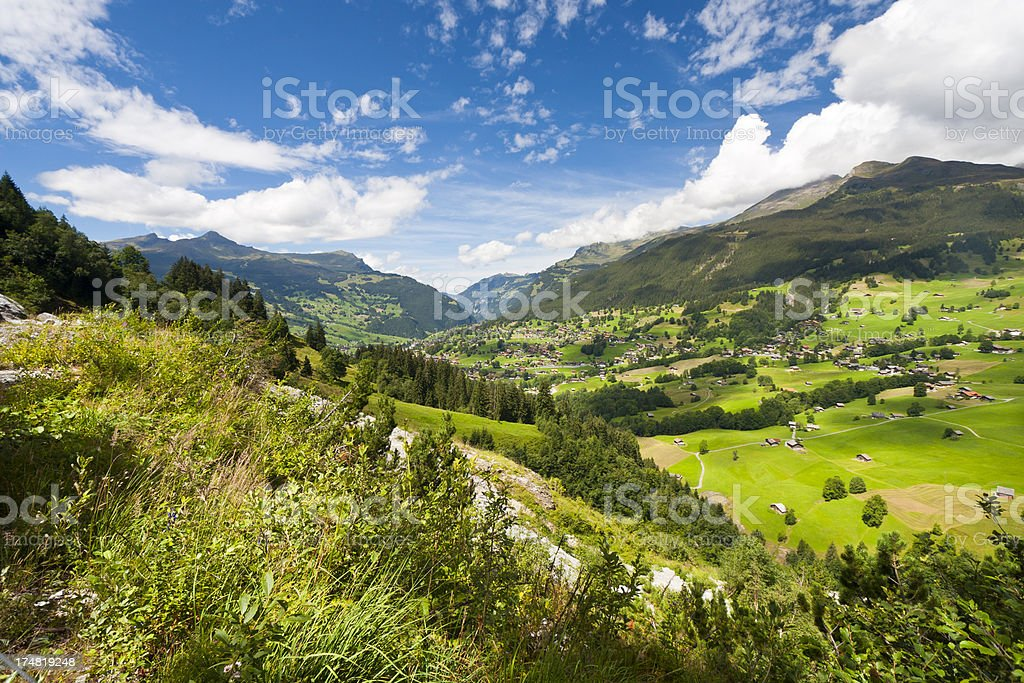 Grindelwald, Swiss Alps royalty-free stock photo
