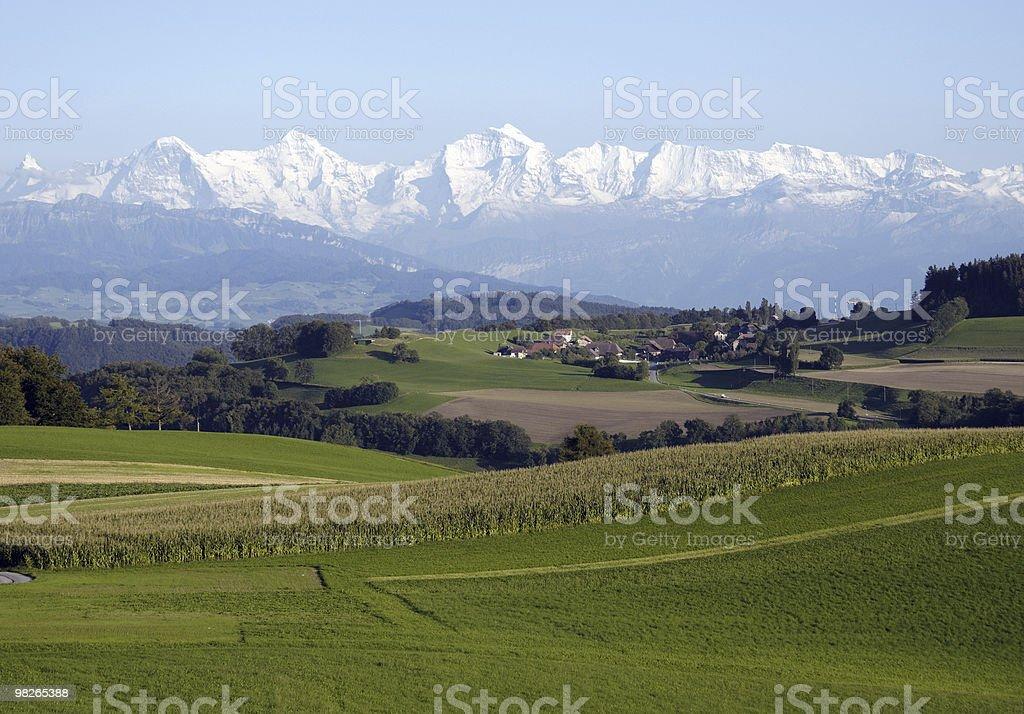 Grüne Felder mit Eiger, Mönch und Jungfrau im Hintergrund royalty-free stock photo