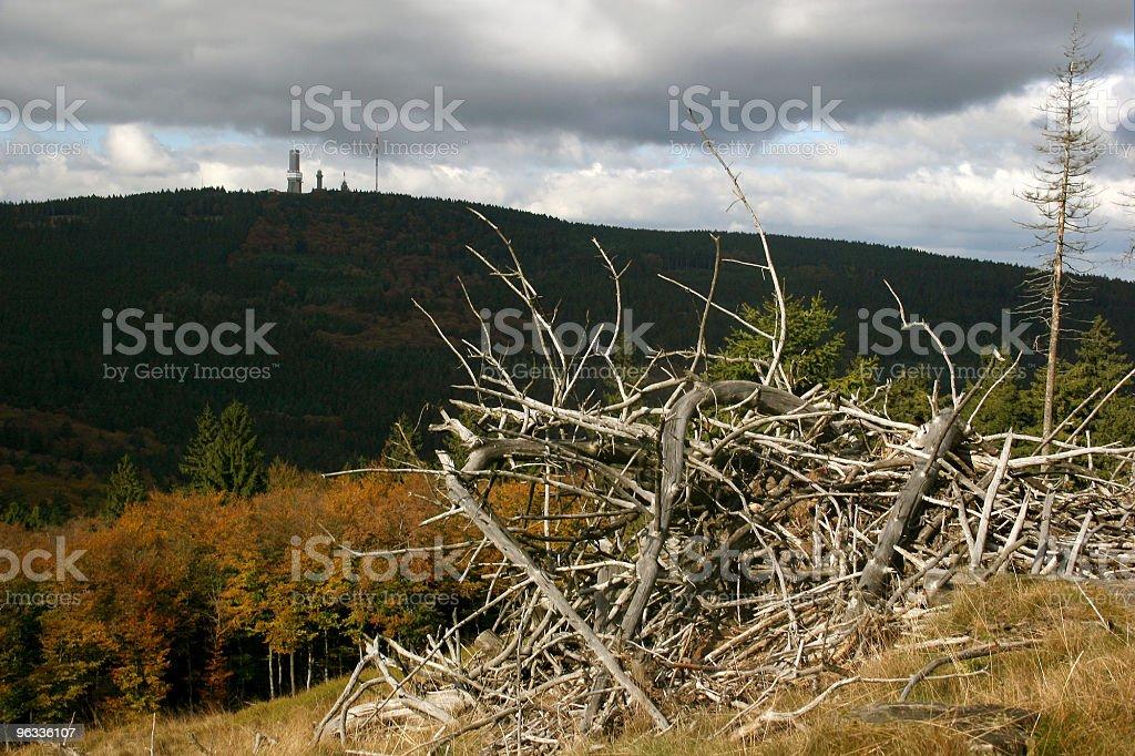 Großer Feldberg im Taunus stock photo