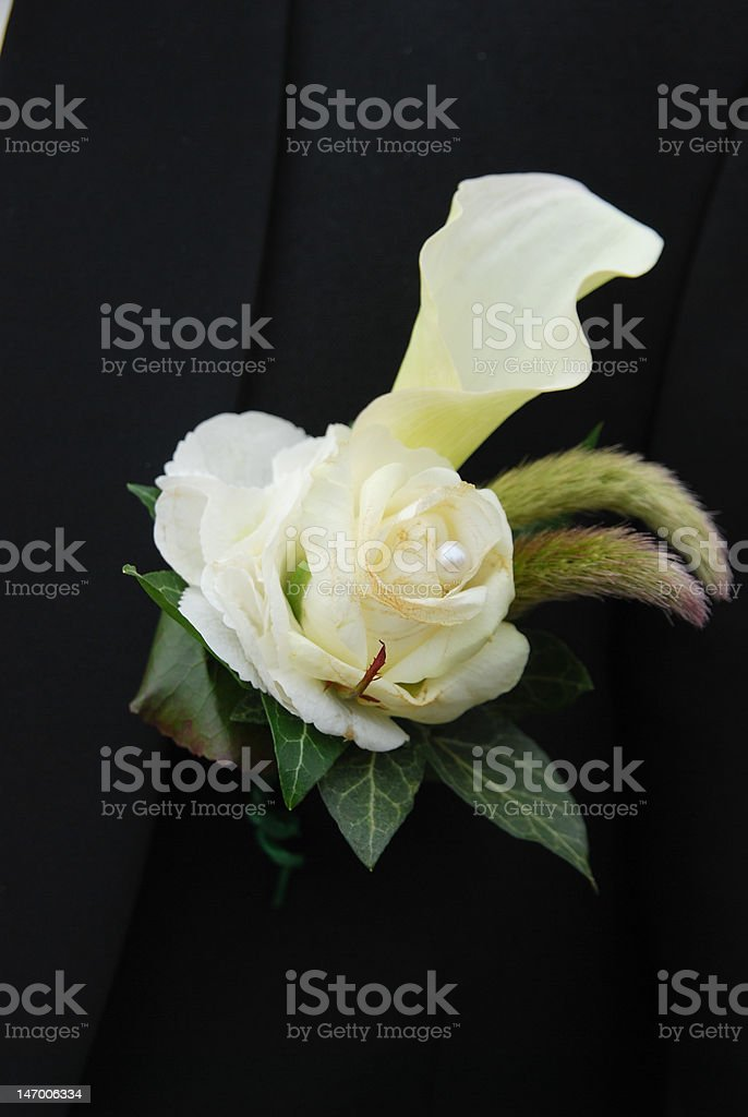 Groom boutonniere royalty-free stock photo