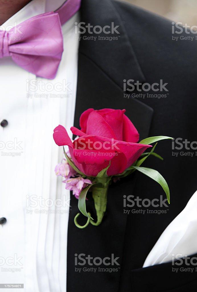 Groom, Tuxedo and Bow Tie royalty-free stock photo