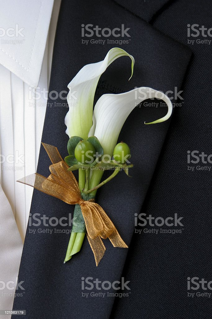 Groom's Boutonniere royalty-free stock photo