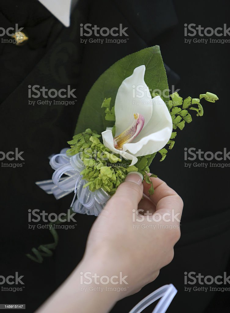 Grooms boutonniere stock photo