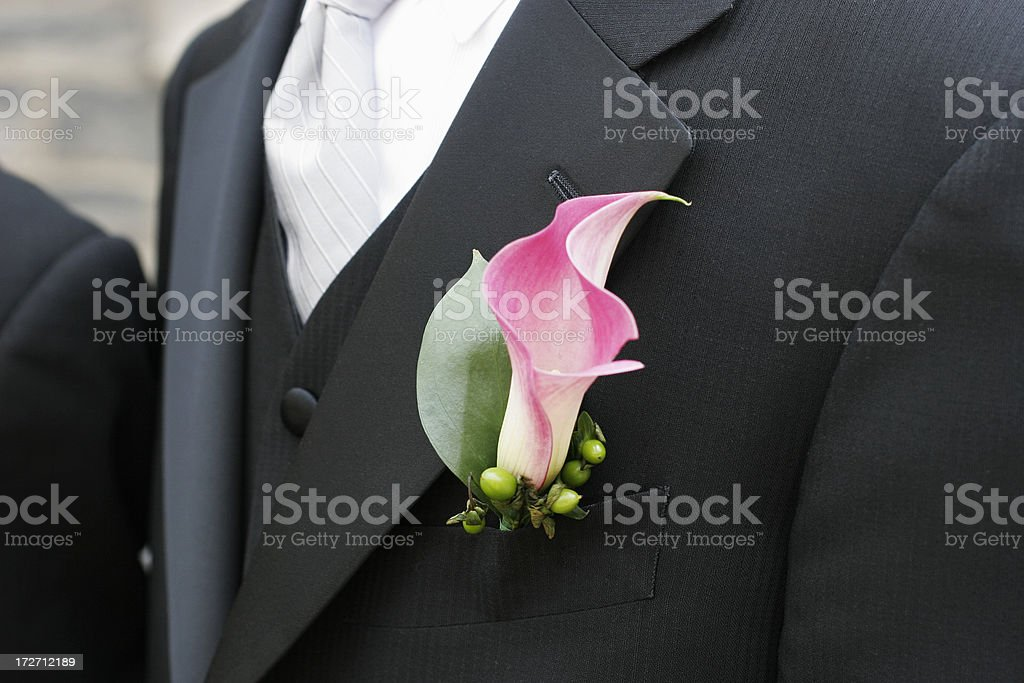 groom's boutonniere stock photo
