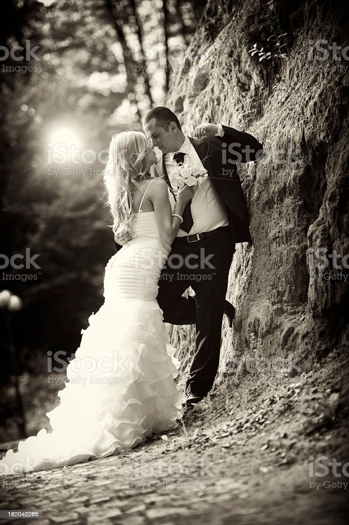 grooms kissing royalty-free stock photo