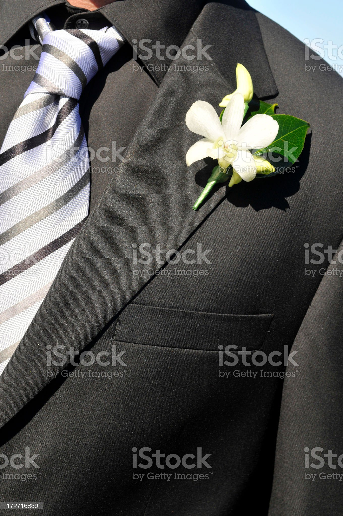groom's suit royalty-free stock photo