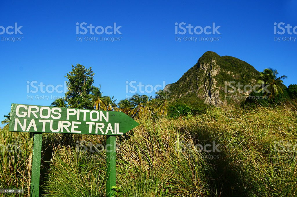 gros pitons nature trail st lucia stock photo