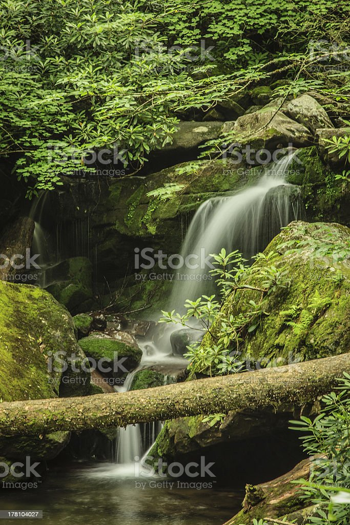 Grotto Falls, Great Smoky Mountain National Park royalty-free stock photo