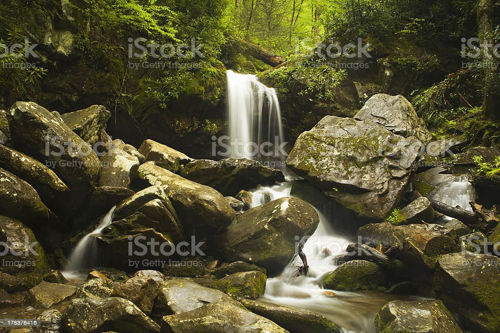 Grotto Falls - Smoky Mountains royalty-free stock photo