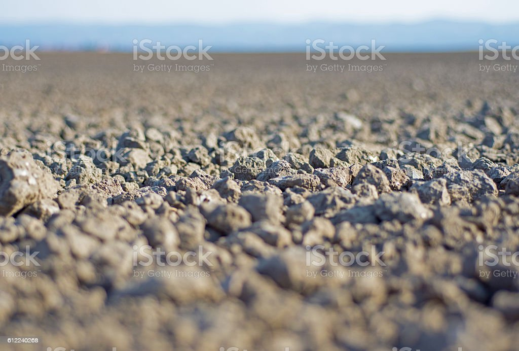 Ground Close Up. Arable Land. Soil Background. Fertile Land. stock photo