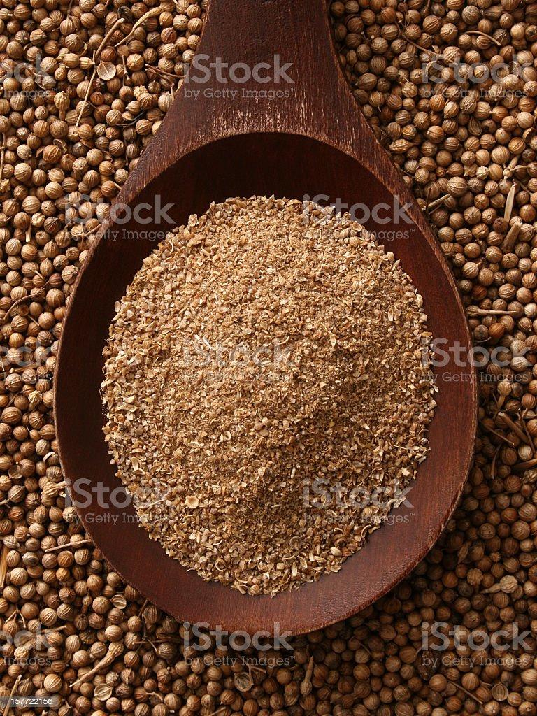 Ground coriander seeds royalty-free stock photo