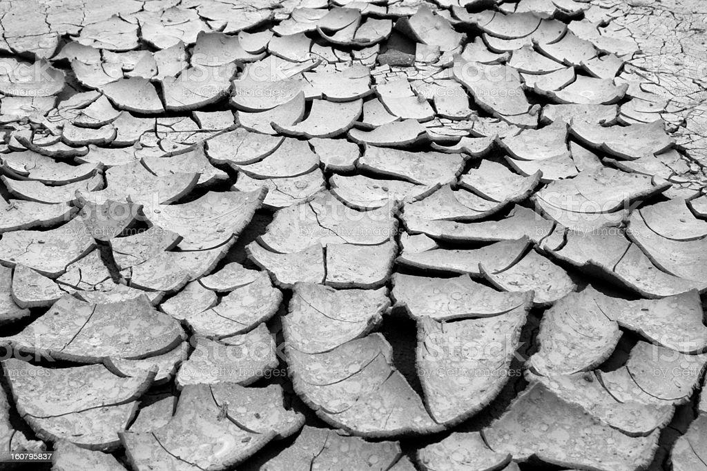 Ground Cracks stock photo