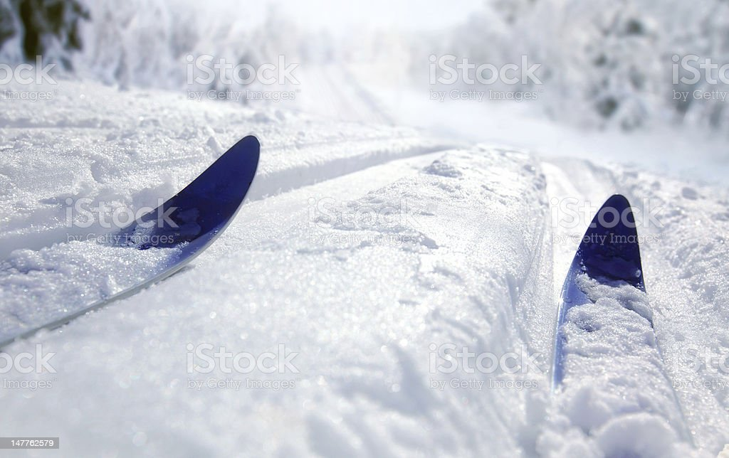 Ground level view of cross country skiing stock photo