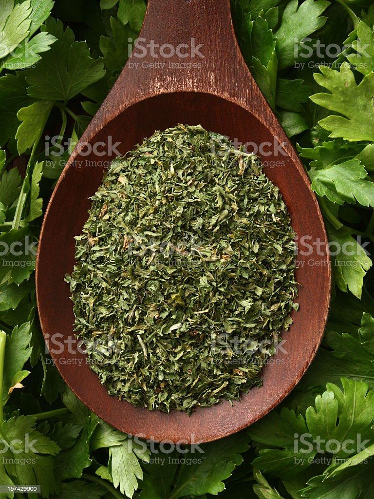 Ground parsley royalty-free stock photo