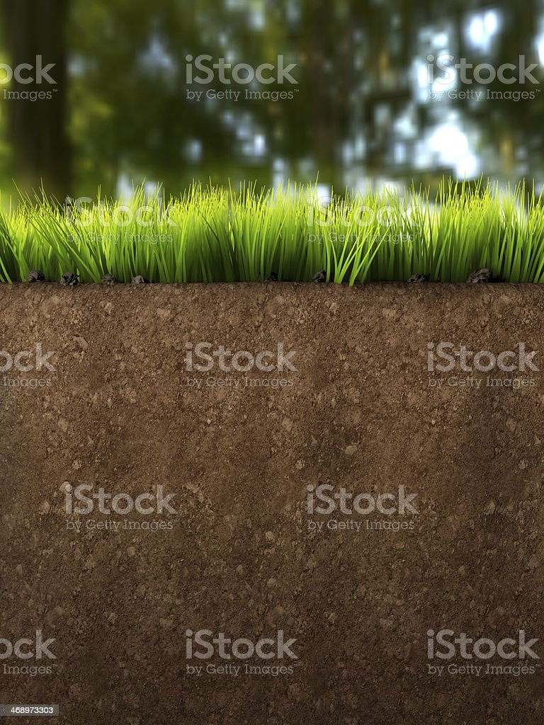 Ground Section stock photo