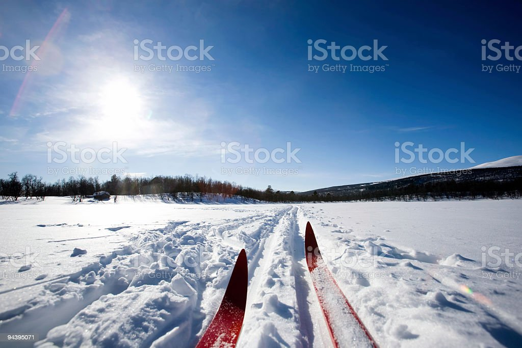 Ground view of red skis traveling on packed snow stock photo