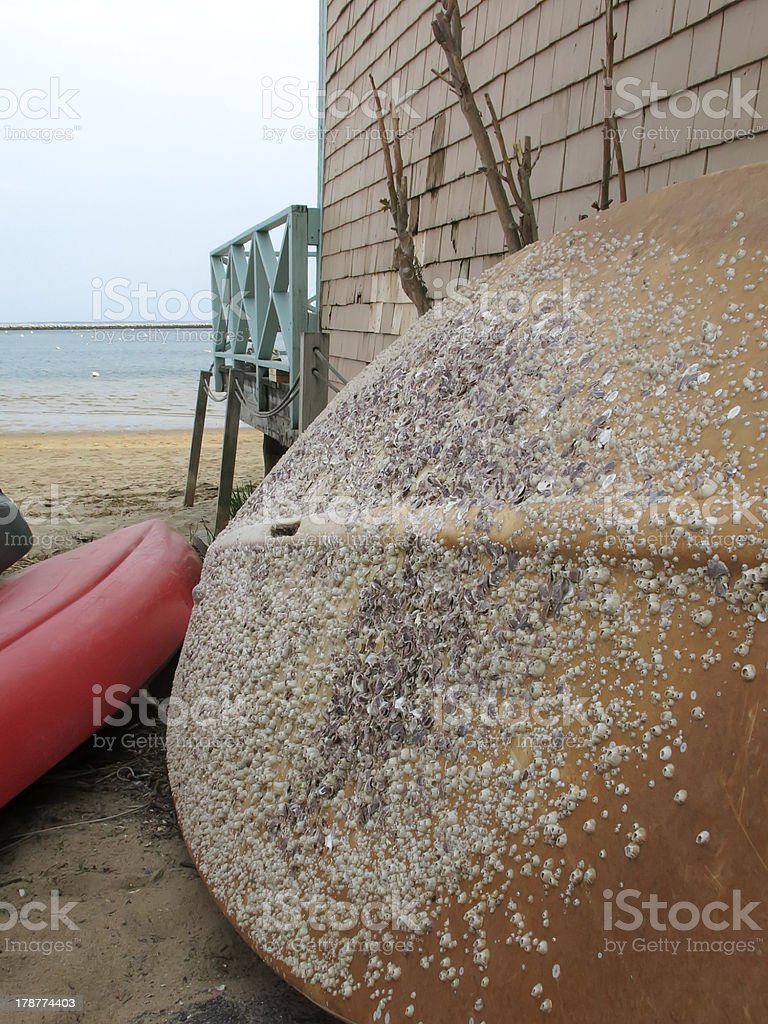 Grounded by barnacles stock photo