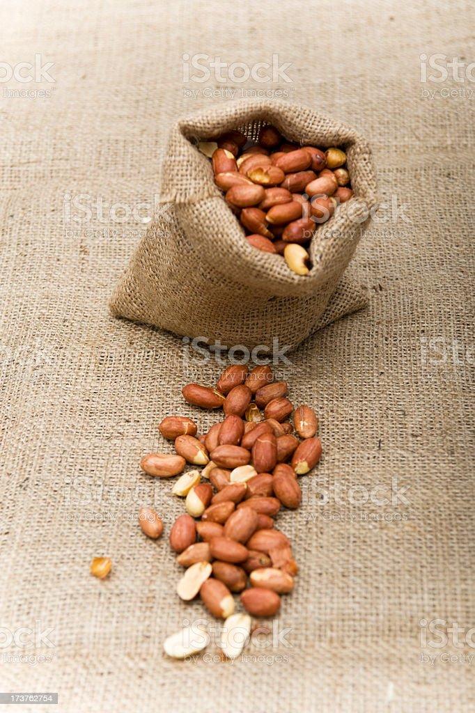 groundnut royalty-free stock photo