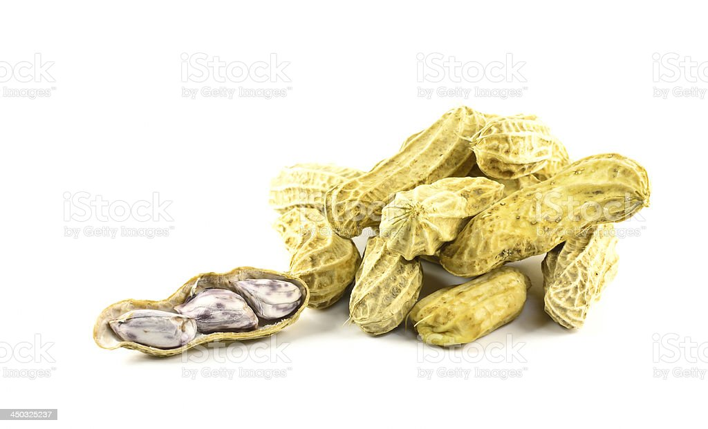 groundnut royalty-free stock photo