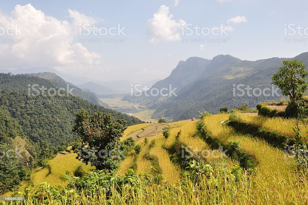 Grounds in Nepal royalty-free stock photo