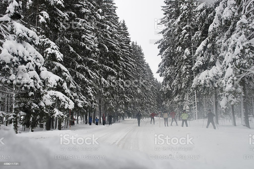 Group of adults crossing  a winter road, cross country skiing royalty-free stock photo