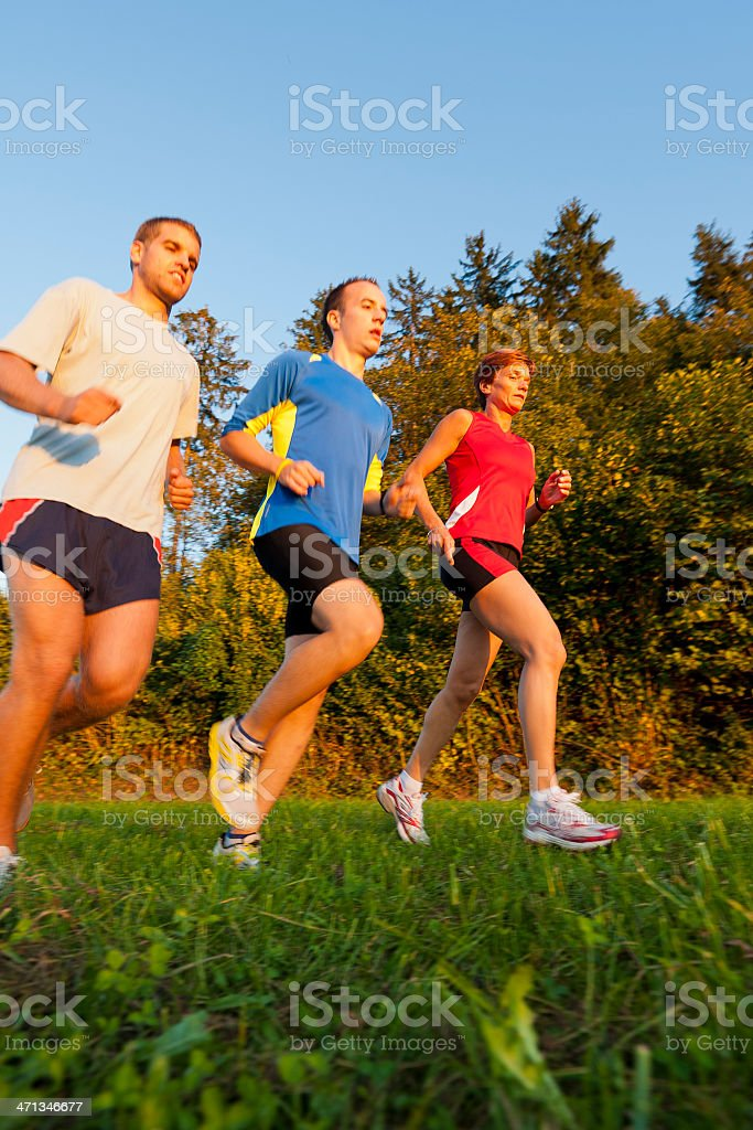 Group of  athletes jogging in the park royalty-free stock photo