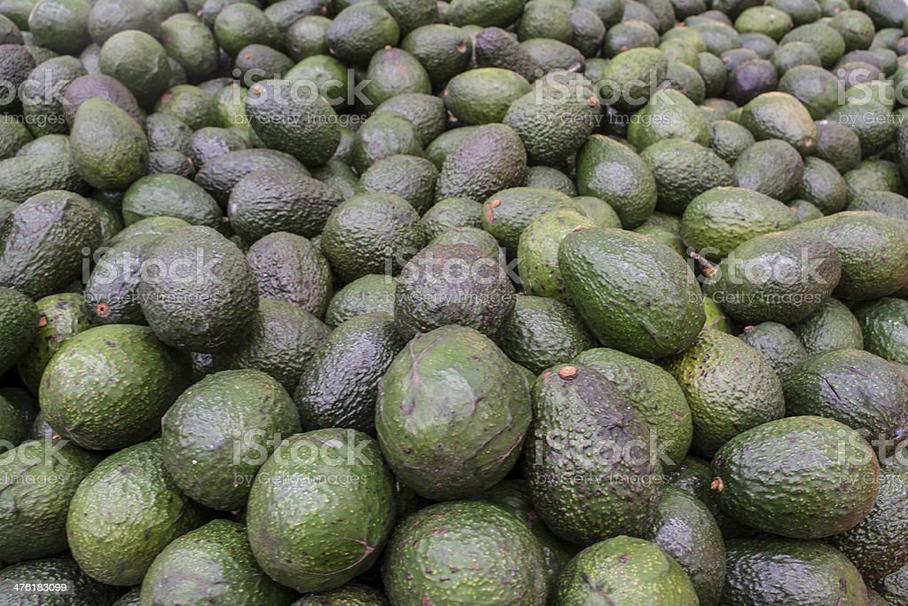 Group of Avocados royalty-free stock photo