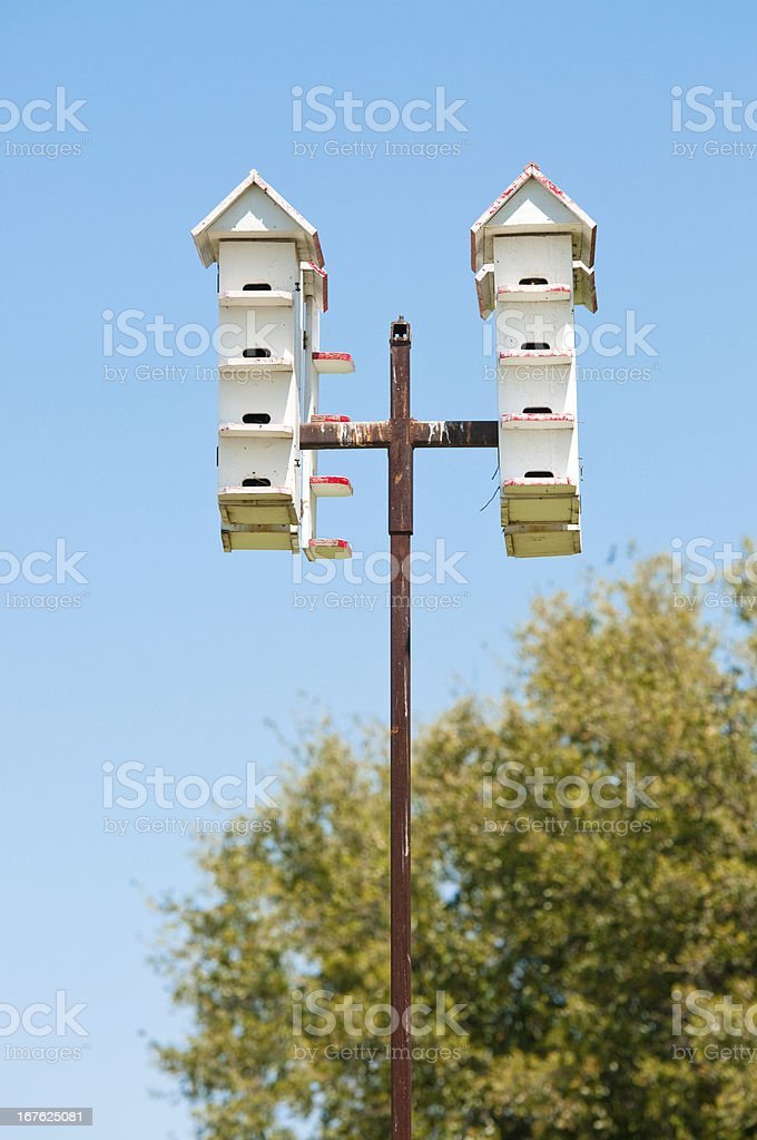 Group of bird houses on a pole royalty-free stock photo