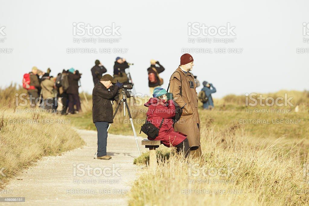 Group of Bird Watchers stock photo