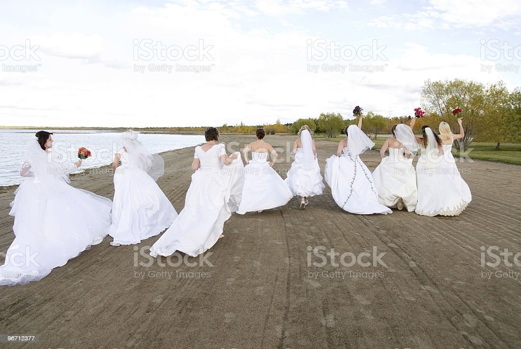 Group of Brides stock photo