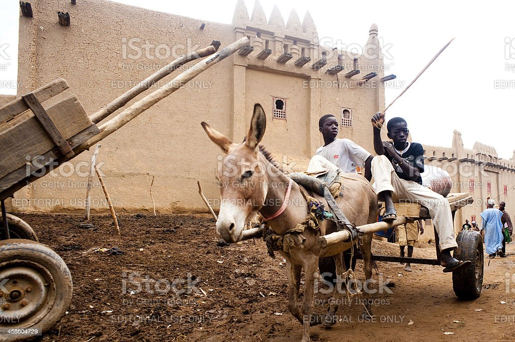 Group of children easygoing with a donkey royalty-free stock photo