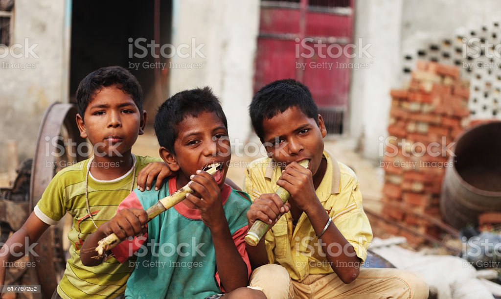 Group of children enjoying sugarcane stock photo