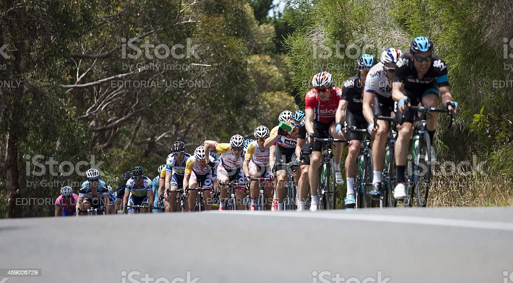 Group of cyclists competing in a major race. stock photo