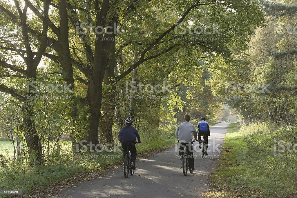 Group of cyclists riding on path under trees royalty-free stock photo