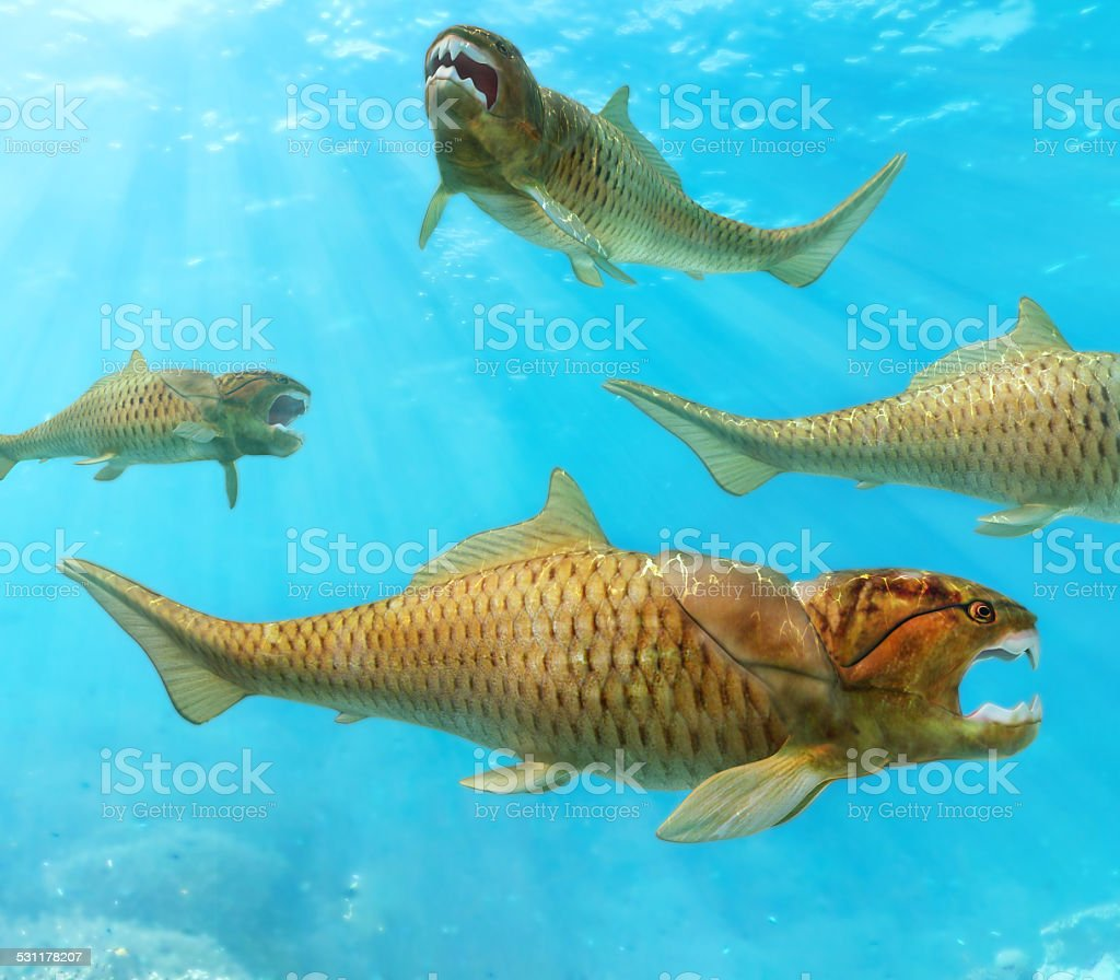 Group of Dunkleosteus Circling stock photo