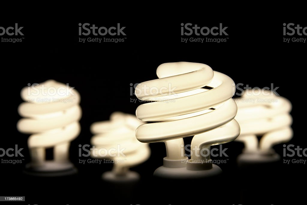 Group of Energy Efficient Light Bulbs royalty-free stock photo