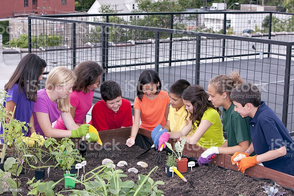 Group of Ethnic Children Planting Urban Roof Garden stock photo