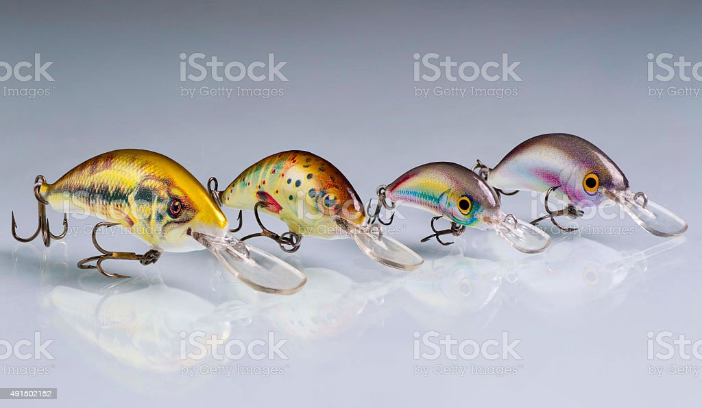 Group of fishing tackle in a row royalty-free stock photo