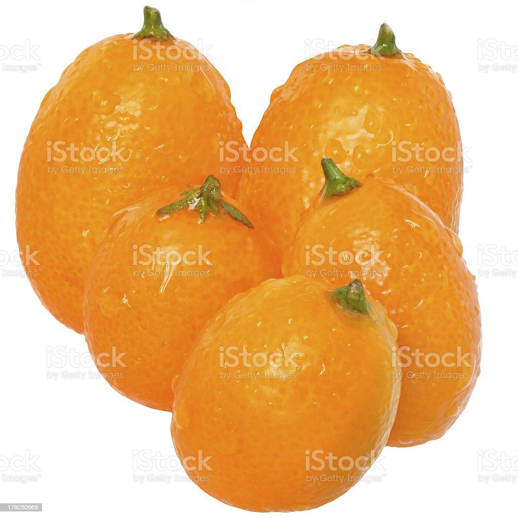 Group of fresh kumquat close up isolated royalty-free stock photo
