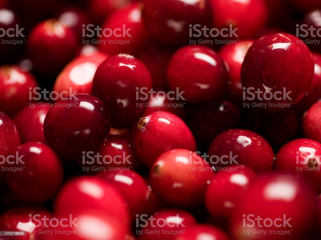 Group of fresh red shining cranberries stock photo
